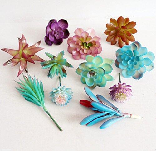 Dutch Brook 5Pcs Different Fake Succulents Artificial Cactus Plants for Office Home Garden Decor Blue Sent Randomly