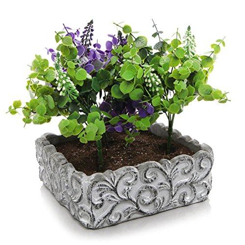 Mygift Cement Succulent Plant Pot  Small Swirl Design Kitchen Herb Box Gray