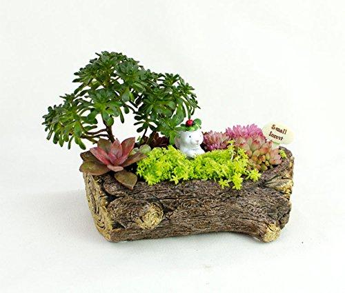 Cement Rabbit Pot Cacti Succulent Plant Pot Flower Planter Mini Garden Design