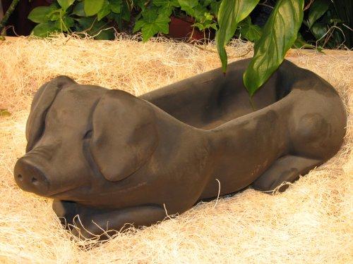 PIG Hog PLANTER 215 Dark Brown Stain CAST CEMENT FLOWER POT Stone OUTDOOR Indoor GARDEN Decor CAST Entry ACCENT