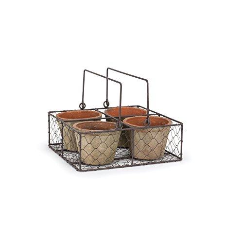 Abbott Collection Quad Moss Pot In Basket