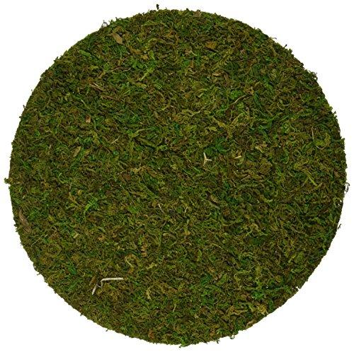 Super Moss 26300 Preserved Soil Topper Moss Pot 6-inch