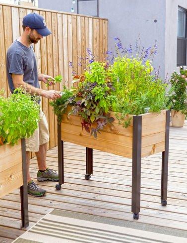 Self Watering Cedar Raised Garden Bed Standing Garden