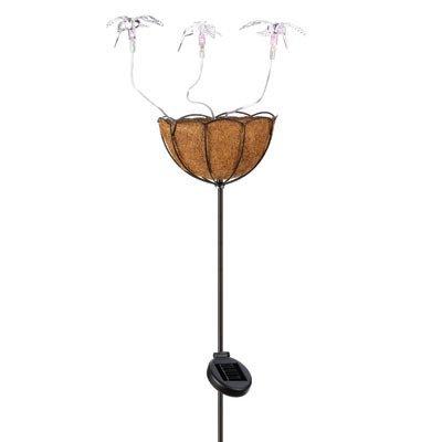 koehler Home Decor Outdoor Garden Accent Solar Hummingbird Basket Stake