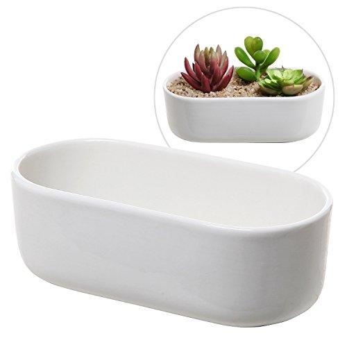 Modern Oval Design White Ceramic Succulent Plant Holder  Decorative Cactus Flower Planter Pot