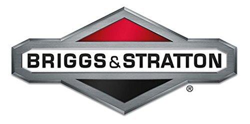 Briggs Stratton Motor STEPPER 845324GS