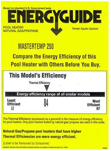 Pentair 460733 MasterTemp High Performance Eco-Friendly Pool Heater Propane Gas 250000 BTU