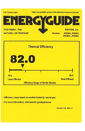 Raypak 406000 Btu Digital Electronic Ignition Natural Gas Pool Heater