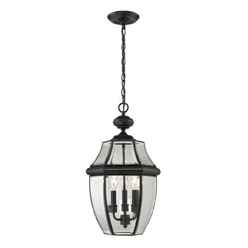 Elk Lighting 8603EH60 Ashford Hanging Lantern Large Black Finish