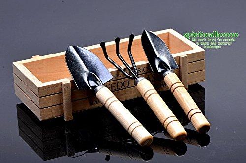 Sun-e 3 Pcs Set Mini Garden Plant Tool Gardening Tool Shovel Rake