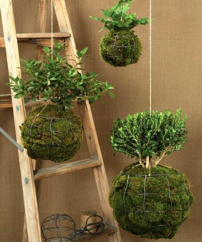 String Garden Sphere - 12 x 10