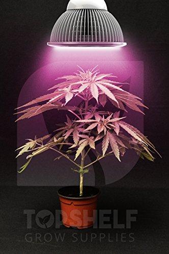 Top Shelf Grows Premium Grow Light - Led Growing Organic Indoor Herbs Garden Plants - Fast Growth - Seeds To Buds