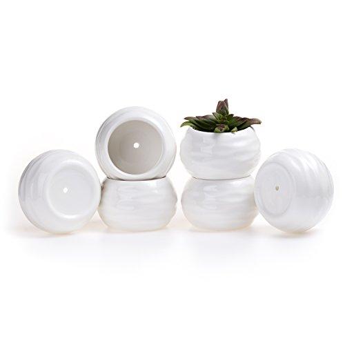 T4u 375 Inch Ceramic White Drum Shape Square Sucuulent Plant Potcactus Plant Pot Flower Potcontainerplanter