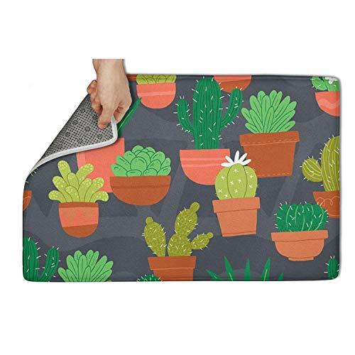 WENZI9DU Indoor and Outdoor Cactus Plants Colorful Graphic Design Drawing Door Mat Absorbent Beautiful Door Mats 31x19 Inch Carpets