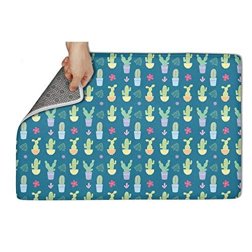 WENZI9DU Indoor and Outdoor Cactus Plants Door Mat Microfiber Personalized Door Mats 31x19 Inch Carpets