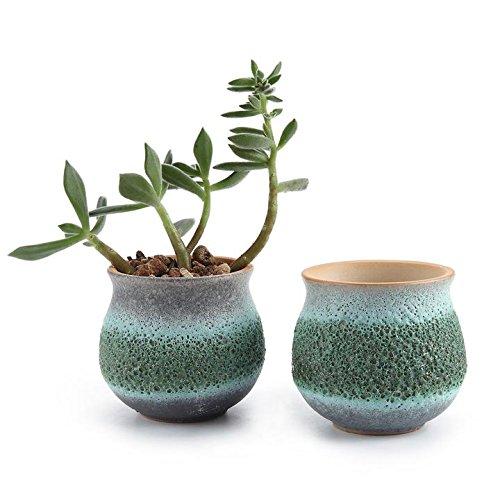 T4u 275 Inch Ceramic Summer Trio No1 Sucuulent Plant Potcactus Plant Pot Flower Potcontainerplanter Green