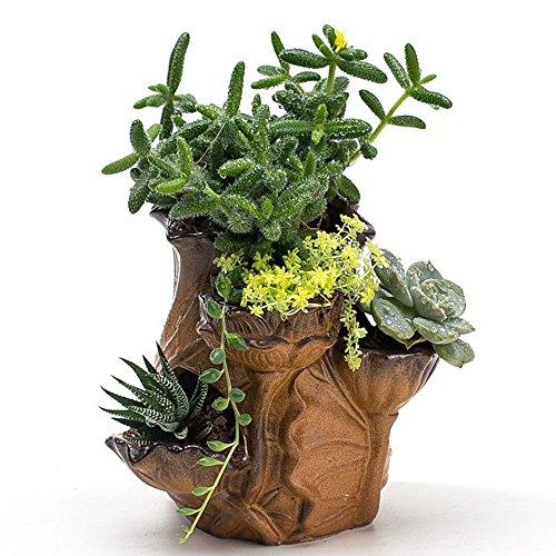 Ceramic Lotus Bottle Cacti Succulent Plant Pot Flower Planter Mini Garden Design