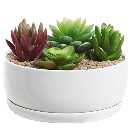 6 inch Modern White Ceramic Round Designer Succulent Planter  Cactus Pot  Decorative Flower Holder Bowl