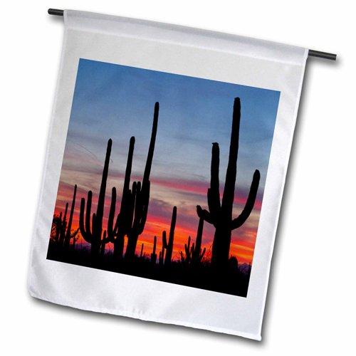 3dRose Sonoran Desert Saguaro National Park Arizona USA US03 BJY0007 Jaynes Gallery Garden Flag 12 by 18