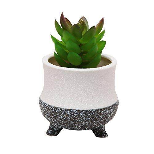 Modern Decorative Small Ceramic Succulent Planter Flower Pot  Desktop Organizer Pen Holder - Mygift&reg