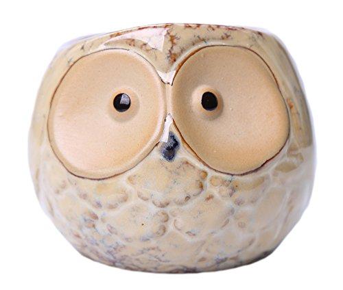 Greencherry Creative Ceramic Owl Shape Flowerpot Succulent Plant Container Decorative Planter