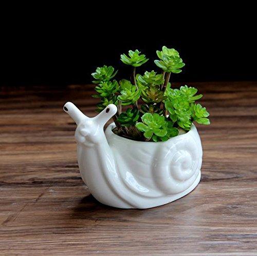 HEYFAIR White Ceramic Cactus Succulent Planter Pot Container Gardens Snail