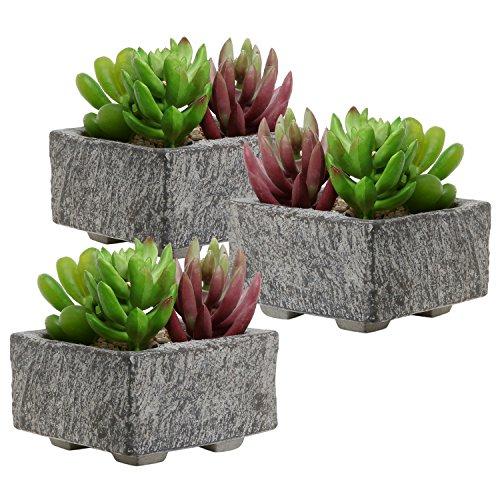 Set Of 3 Decorative Mini Gray Cement Square Succulent Plant Boxes  Cactus Planter Containers - Mygift&reg