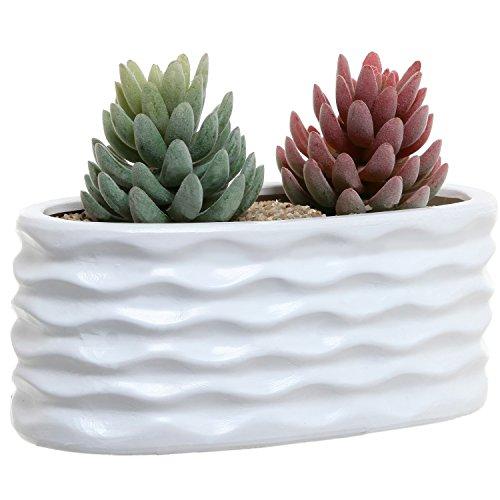 White Ceramic Wavy Design Art Deco Oval Succulent Planter Pot  Windowsill Herb Garden Container - Mygift