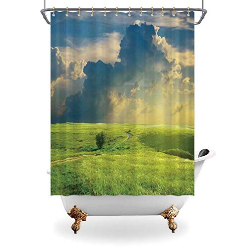 ALUONI Nature Machine Washable Bath CurtainsSummer Landscape with Grass Road Clouds Rural Bathroom Curtain View Bath Curtain Home Decor with Hooks71 in x 71in