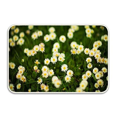 Indoor Door Mat with Non Slip Backing Grass and White Flowers Easy Clean Outdoor DoormatsWaterproof Low Profile Modern Aqua Runners Area Rug24x16 in