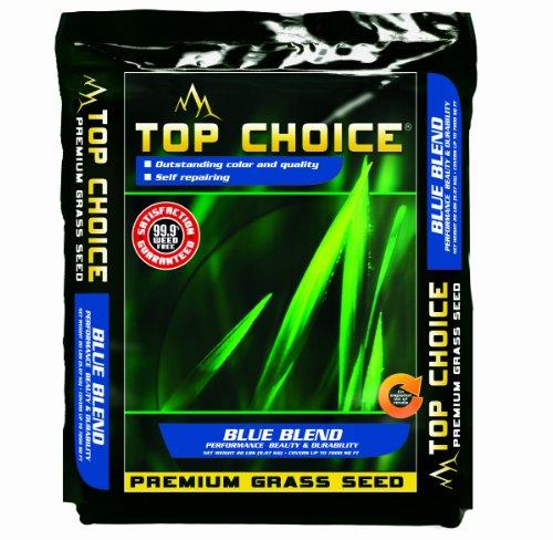 Top Choice 17642 Kentucky Blueperennial Ryegrass Grass Seed Mixture 20-pound