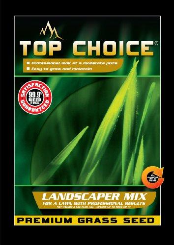 Top Choice 17644 Kentucky Blueperennial Ryegrass Grass Seed Mixture 3-pound