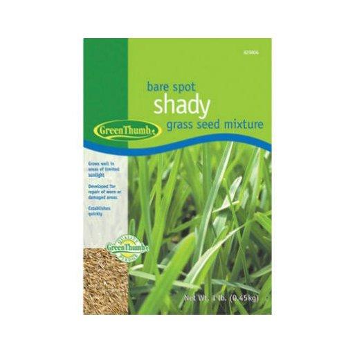 Barenbrug USA Green Thumb GT1SHD Bare Spot Shady Grass Seed Mixture 1-Pound