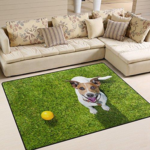 ALAZA Cute Pug Dog Ball on Green Grass Area Rug Rugs for Living Room Bedroom 7 x 5