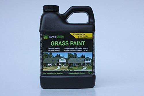 KEEPN IT GREEN GRASS PAINT 17 OZ COVERS UPTO 1000SQFT-92M2