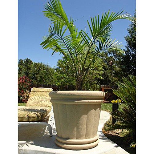 Round Fiberglass Roman Urn Planter