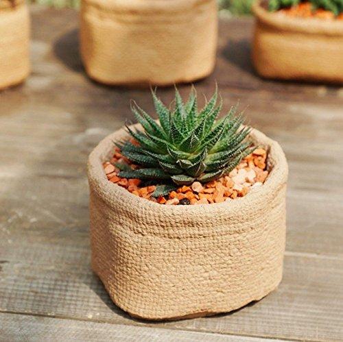 Sun-e Succulent Cute Sacks Shape Cement Bonsai Pot Planter Plant Flower Desktop Container Garden Indoor Outdoor