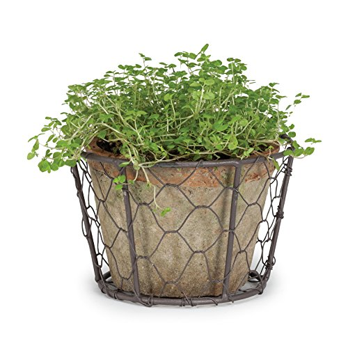 Cottage Life 4 Large Vintage Terracotta Green Moss Pot Planter In Wire Basket