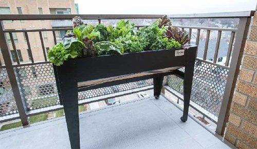 LGarden Balcony Elevated Garden System Black