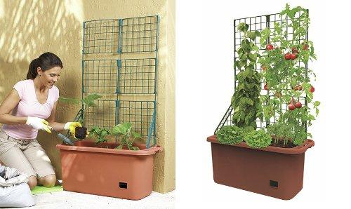 Mobile Garden Vegetable Patch Planter Potamp Trellis Climbing Vine Patio Tomato Veggies Herbs