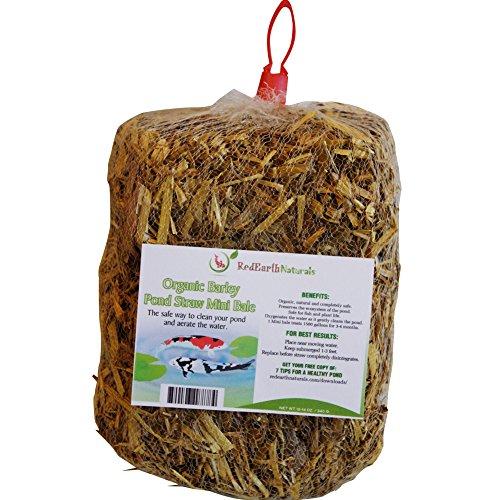 Premium Organic Barley Pond Straw Mini Bale - Cleans Pondsamp Water Gardens The Safe Natural Way