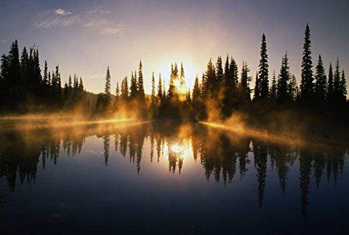 Imagekind Wall Art Print entitled Sunbeams Through Mist Over Pond by Design Pics  32 x 22