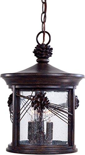 Minka Lavery Outdoor Pendant Lighting 9154-357 Abbey Lane Ceiling Lighting for Patio 180 Watts Iron