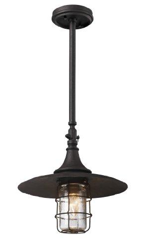 Troy Lighting F3228 Allegany Dark Sky Outdoor Ceiling Light 60 Total Watts Centennial Rust