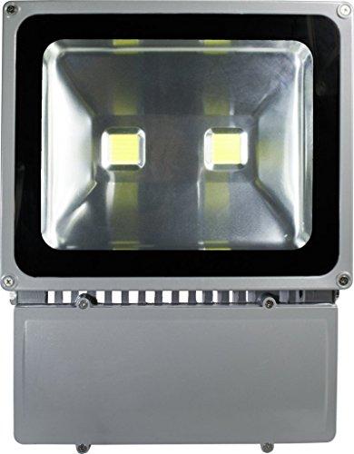 Ecosort-LED 100W Floodlight Flood Lights Waterproof Outdoor Street Lamp Garden Lighting Indicators Projector Spotlight Reflector Outside