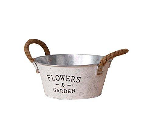 M Vintage Style Succulent Plant Iron Pots Decorative Flowerpot