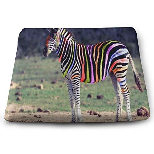 Ladninag Seat Cushion Stripes Animals Zebra Chair Cushion Offices Butt Chair Pads for CarsOutdoorsIndoorKitchensWheelchairs