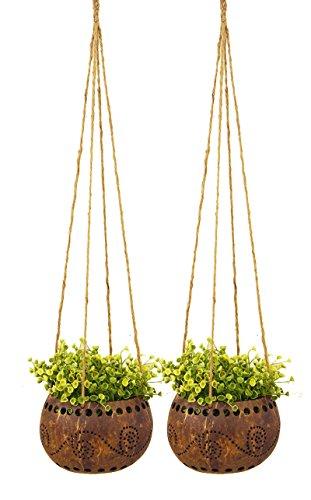 Exotic Elegance Set Of 2 Garden Decorative 4 12&quot Coconut Shell Hanging Planter Pot size M