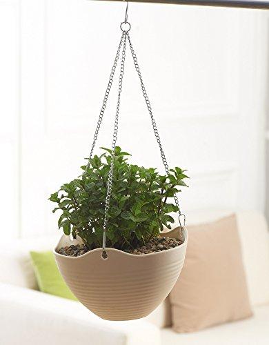 Hanging Flower Plant Pot Chain Basket Planter Holder - Garden Patio Decor - Beige