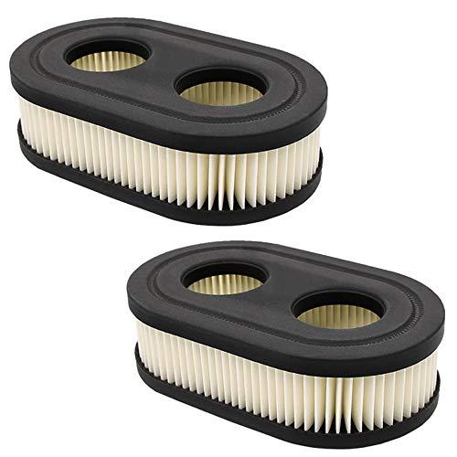 HOOAI 593260 798452 Air Filter - Air Filter Cartridge for Briggs Stratton Cartridge 2